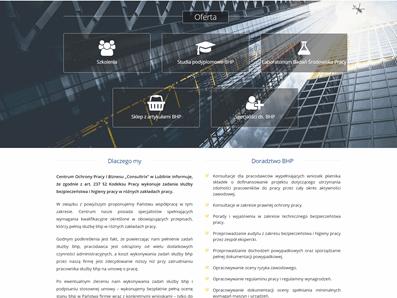 Projekt i wykonanie strony consultrix.pl